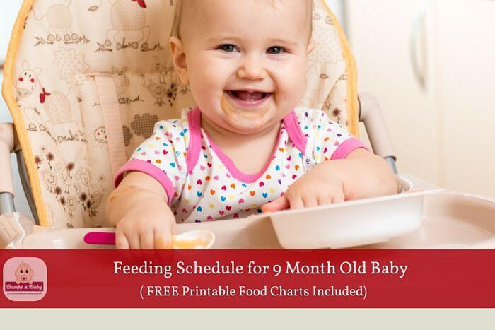 9 month old feeding schedule