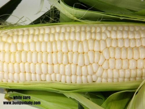 home made cerelac white corn