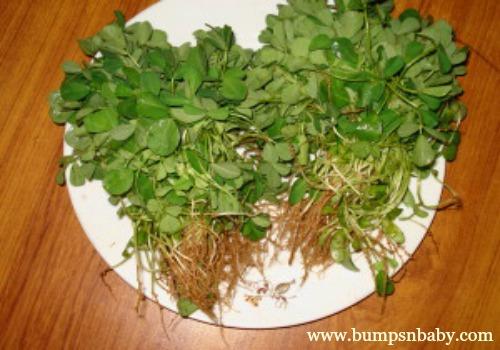 iron rich methi leaves