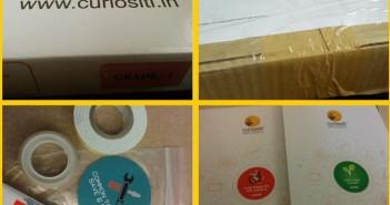 curiositi activity box