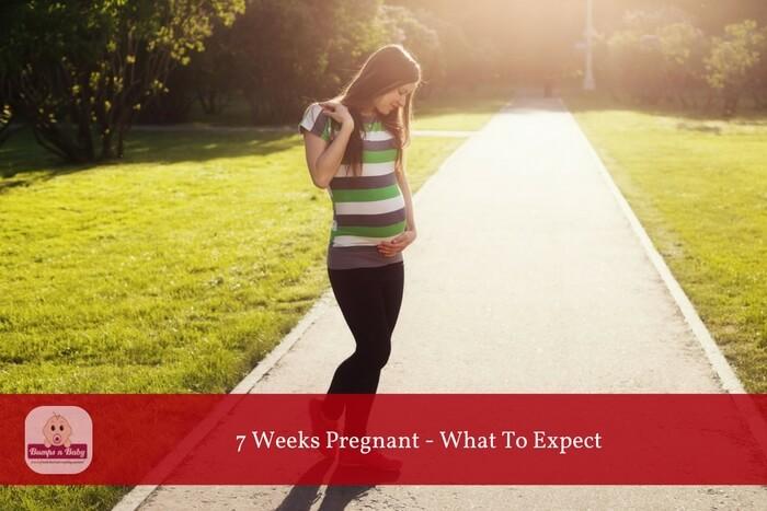 7 week pregnant