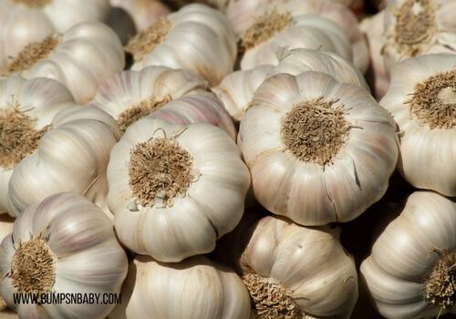 hemorrhoids during pregnancy garlic