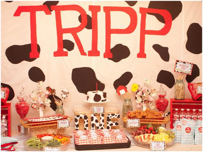 farmyard birtdhay party themes for girls