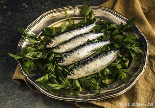 vitamin D rich foods sardines